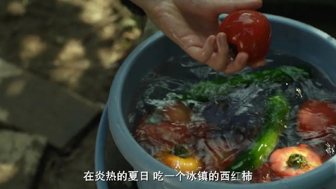 炎炎小暑如何消夏?瓷上水果给你带来清凉~